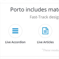 DNN Porto Skin with Matching Module Themes