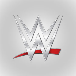 World Wrestling Entertainment Inc.