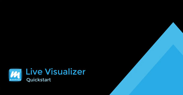 Live Visualizer